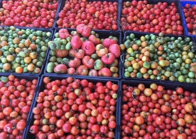 Tomatoes from the kitchen garden anyone?